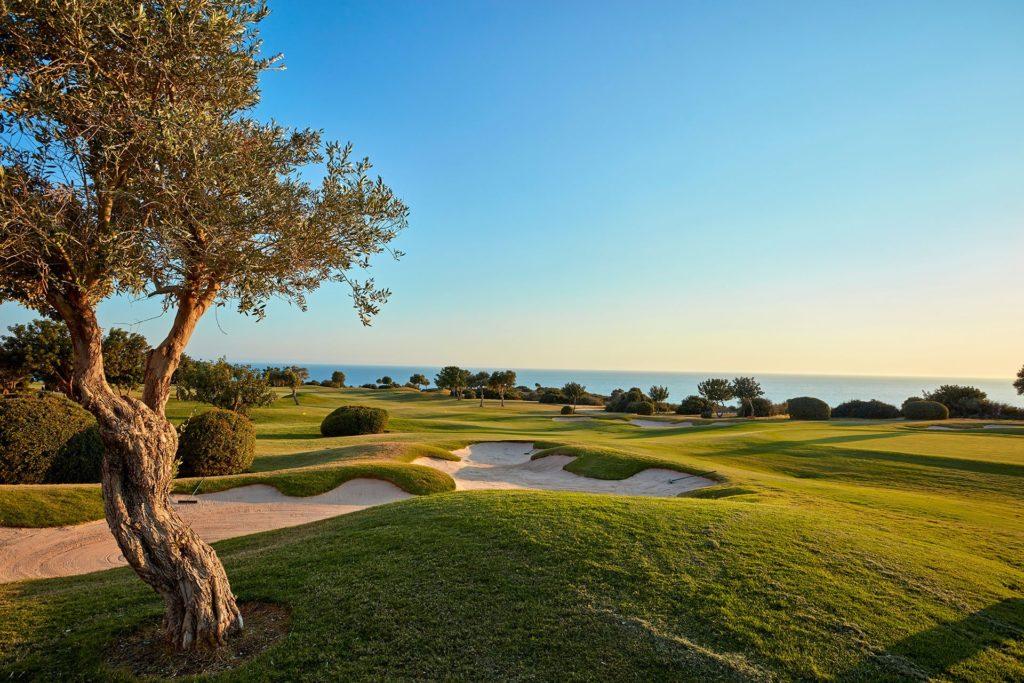 gallery-golf-05