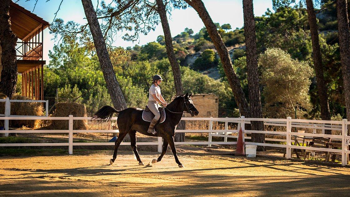Horse-Riding-Slider-02